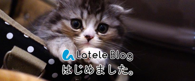 ラテールのブログができました。のイメージ画像