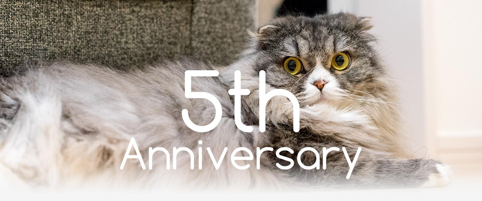 祝・5周年!のイメージ画像
